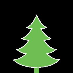 Smrk pichlavý 150‑200cm