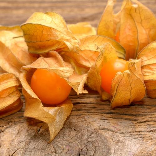 Netradiční druhy ovoce
