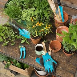 Gardening equipment & tools