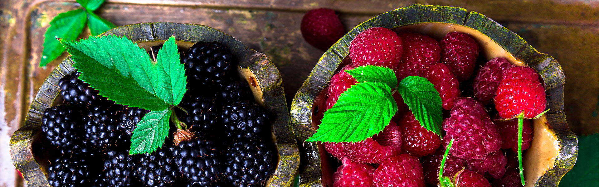 """<p data-aos=fade-up style=""""text-align:center""""><strong>Spring is a perfect time for small fruits planting</strong></p> <p class=vice data-aos=fade-up><a href=""""https://www.zahradaflora.cz/en/fruit-trees/"""">More here</a></p>"""